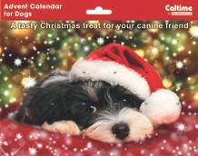 Calendari Animali