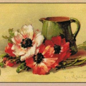 Cartoline Fiori e Frutta